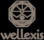 Wellexis Logo